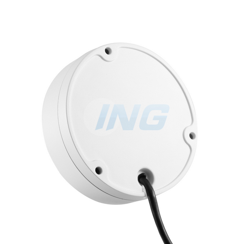 best selling 1080P 2MP IR Night Vision IP camera IP66 Waterproof  Dome metal CCTV Surveillance Camera